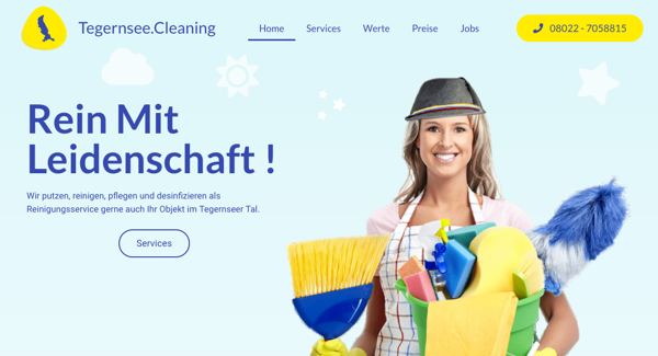 tegernsee cleaning
